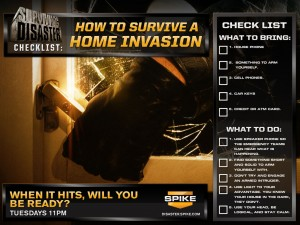 4_1024x768_Homeinvasion