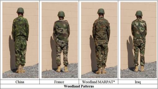 woodland_patterns