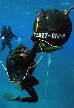 Post image for The Gas Laws and Physics of Diving