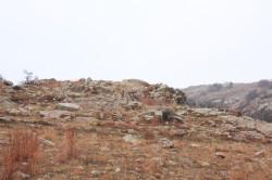 Camouflage Testing Ground