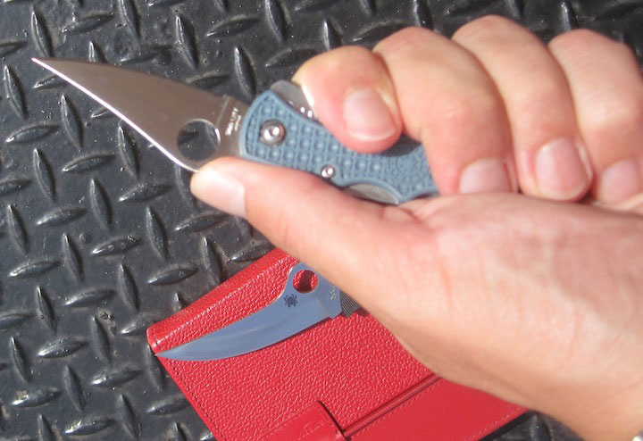 Spyderco Dyad Jr. Knife
