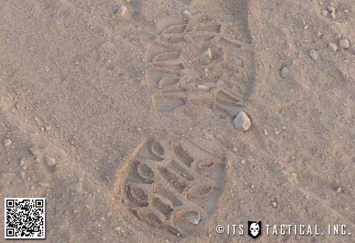 Fresh Footprint