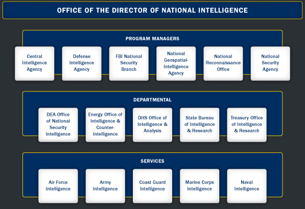 Intelligence Community Structure