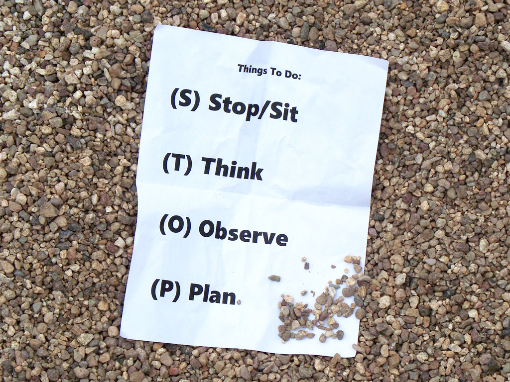 Stop Sit Think Observe Plan