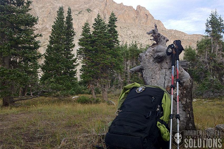 Black Diamond Trekking Poles