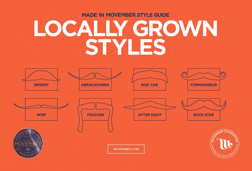 2014 Movember Mustache Styles