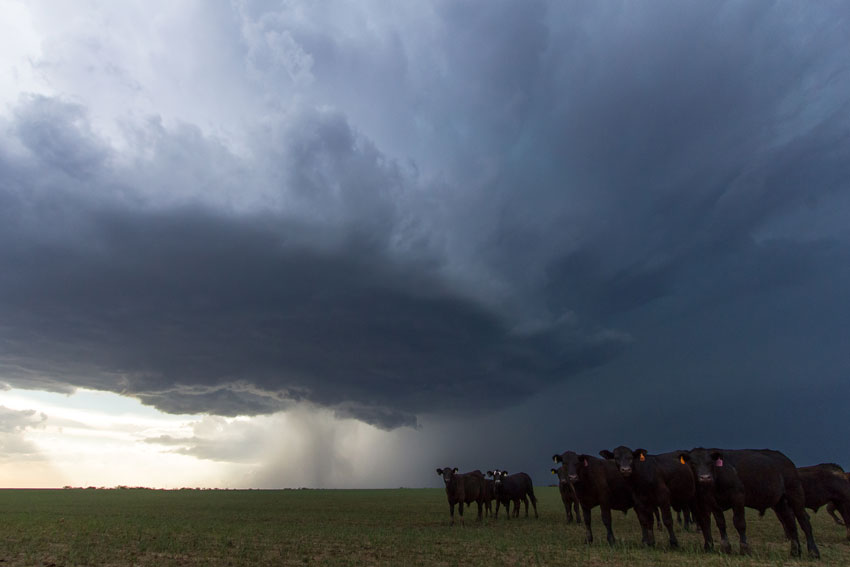 Storm Chasing 14