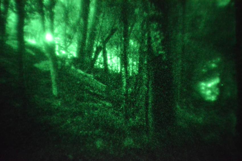 nvg_woods