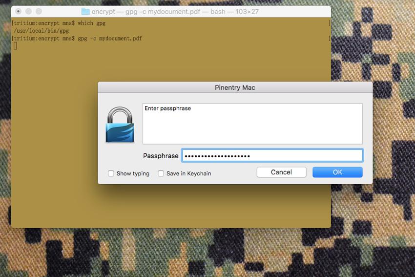 encrypt_gpg